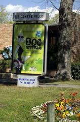 Dog attitude