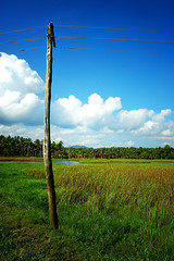 electric pole/post - lomo filter (thejasp) Tags: travel india green tourism colors lines clouds d50 landscape lomo lomography nikon scenery asia power kitlens kerala pole powerline 1855mm nikkor dslr indien trivandrum southindia electricpole keralam southasia gimplomo electricpost    indiatravel    thiruvananthapuram indiatourism thejas saarc   sdindien vellayani  zuidindia  thejasp           suurindland
