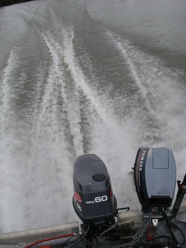Yamaha P60