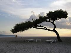 Wind-formed (Plavistribor) Tags: croatia bol bra zlatnirat mywinners