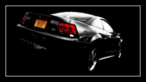 Mustang selective