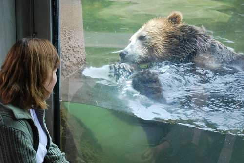 SF Zoo 074