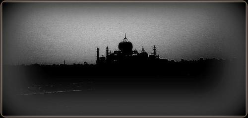Taj Grimy