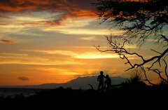 Maui Sunset (danimaniacs) Tags: sunset tree silhouette hawaii couple branch personal favorites maui romance lovers romantic starphoto thebestofday gününeniyisi naturessihouettes colorfullaward