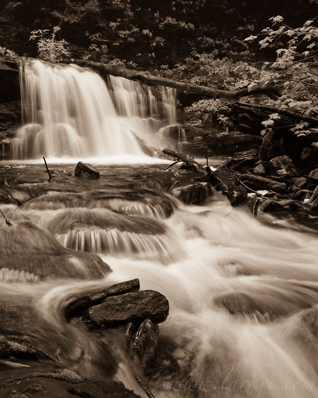 Waterfall (Sepia), Rickett's Glen State Park, Pennsylvania, June 2008