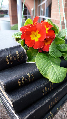 I love plants, but books shouldn't be watered!