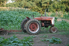Sergi tractor