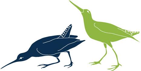 land birds 4