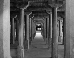 An hall with thousand pillars