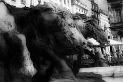 Les Chevaux de Neptune (SpUtNik 23 -RUR und MKZ) Tags: horse cheval lyon neptune chevaux terreaux