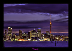 HDR Pink (Light Knight) Tags: newzealand green night landscape clean auckland untouched pure hdr photomatix 5photosaday lightknight golddragon platinumphoto aplusphoto nikond300 robinducker rdpnzcom thebestcityshots nikkor80200128ded