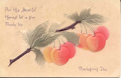 Vintage Thanksgiving postcard Embossed Cherries