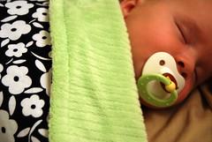 Sleepy Ellery