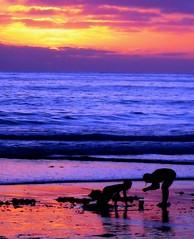 Beach Treasure Hunters,  San Diego (moonjazz) Tags: ocean california pink blue sunset sky beach nature beauty silhouette azul kids clouds wow wonderful children landscape mar bucket sand perfect pretty waves sandiego pastel vivid tourist explore shore zen vista sandcastle discovery curiosity flickrlovers