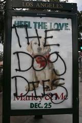MarleyandMe-Billboard-4