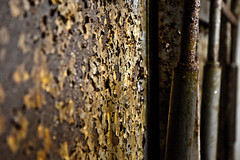 Eben-Emael (shutterrising.com imaging) Tags: world canon eos ruins war belgium fort military wwii ruine bunker ii eben ruinen belgien ebenemael emael 50d canon1755mm