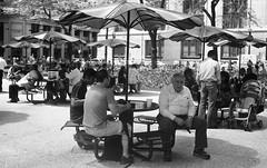 Lunch (Daley Plaza, Chicago) (Fogel's Focus) Tags: chicago streetphotography olympus rodinal 20c 1100 trip35 standdevelopment agfarodinal 45min dalyplaza film:iso=100 legacypro100 developer:brand=agfa developer:name=agfarodinal film:brand=freestylearista freestylearistalegacypro film:name=freestylearistalegacypro100 filmdev:recipe=6345