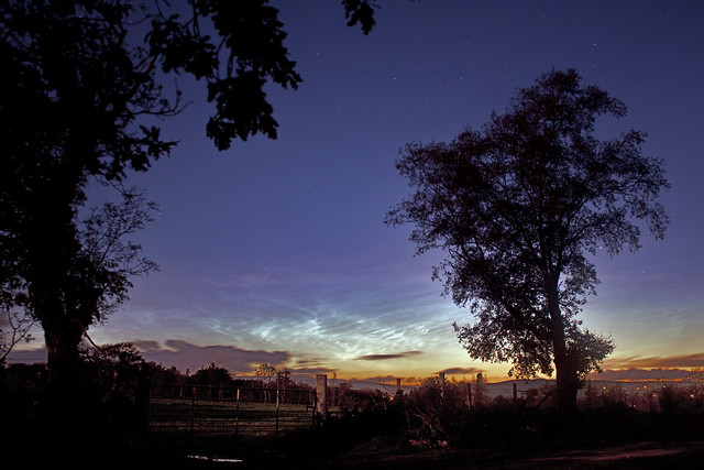 Noctilucent Clouds in the Summer Sky