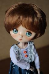 Just Juniper (AluminumDryad) Tags: doll penny freckles juniper obitsu jerryberry autumngirlpenny