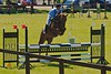Show Jumping - leaping