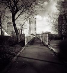 Isle of Dogs (sixbysixtasy) Tags: bridge trees bw london tower film pinhole diafine lensless ilford zero2000 zeroimage panf isleofdogs handdeveloped f138