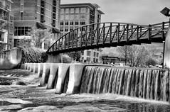 Swamp Fox Bridge B&W