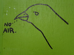 NO AIR. (jacob earl) Tags: wood green bird art graffiti downtown ottawa slaterst noair