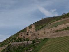 Rhine River Apr 08 096 (MurphMutt) Tags: castle germany rhineriver