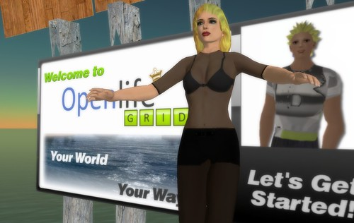 Botgirl in Openlife