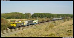 TECO en Castejón (javier-lopez) Tags: train tren trenes railway japonesa contenedores teco renfe 269 adif ffcc irún 01092006 mercancías castejóndeebro madridabroñigal