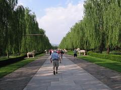 China-0527