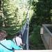 Capilano Suspension Bridge_7
