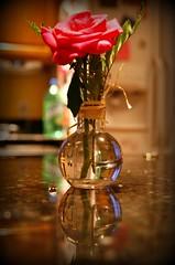 (Kathy~) Tags: flower cw fc idontlikethisphoto flowerinavase photofaceoffwinner pfogold challengew herowinner
