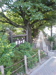 Start of the Philosopher's Walk (Tetsugaku no michi) near Ginkakuji, Kyoto, Japan