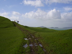 Muddy path (Seamoor) Tags: park new sea two mountain fish tree green beach field barn trek restaurant town open gulf sheep mud wind walk farm space small hill working windy hike auckland zealand coastal turtles pasture lamb peninsula grumpy regional duder lambing hauraki