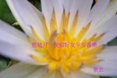 ap_F23_20080803120208411
