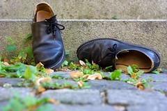 Haferlschua (ABehr87) Tags: old black green fall yellow stairs canon germany bayern deutschland bavaria eos 350d leaf shoes steps andreas treppe gelb german gras grün 2008 schuhe schwarz behr eichstaett eichstätt