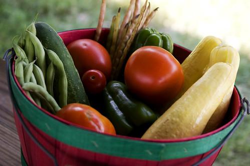 someone's veggies!