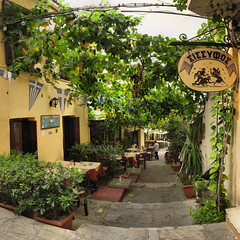 Athènes - Plaka - 10-08-2008 - 17h31