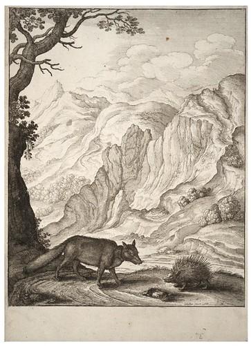 17 - El zorro y el puercoespín