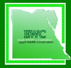 EWC icon