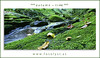 AuTuMn (G.Hotz Photography (busy as a bee =)) Tags: portrait people food lake photography dornbirn feldkirch österreich stillleben foto fotograf fotografie hard bregenz gerald photograph bodensee constance bludenz oesterreich vorarlberg produkt hotz hochzeitsfotograf ondarena fotolyst