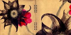 黒い花と赤い花