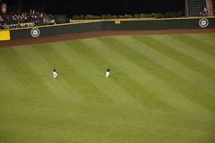 DSC_3444 (penexpers) Tags: baseball safeco seattlemariners losangelesangels