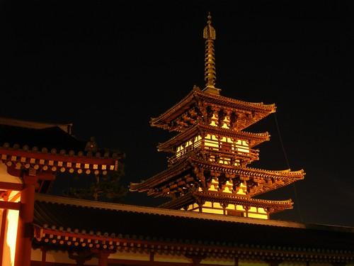 薬師寺(万燈会・夜)-19