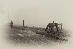 Good old time! (mcazadi) Tags: old morning horse dog sepia artistic time good expression farmer fogy supershot abigfave