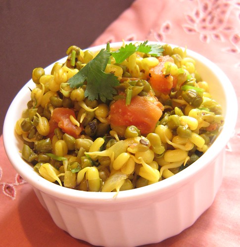 Sprouted Mung Bean Curry Veggie Belly Vegetarian Recipe