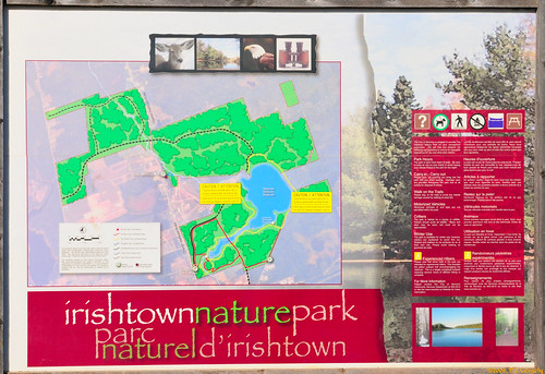 Irishtown nature park