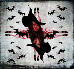 Happy Halloween! (~aspidistra~) Tags: selfportrait texture halloween witch ps tights symmetry sp bats stripy fgr