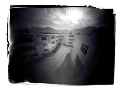bird perspective (menanderman) Tags: camera old bw abstract building film analog vintage wideangle f100 pinhole tei sheet 20mm 19 ilford fp4 largeformat patra homedeveloped ilfosols 65x9 95min